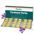 Cystone Forte, 60 tablets